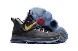 Women Nike LeBron 14 Sneaker 221