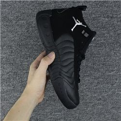 Men Basketball Shoe Air Jordan Jumpman Pro 309