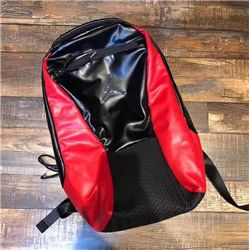 Air Jordan 12 backpack 339